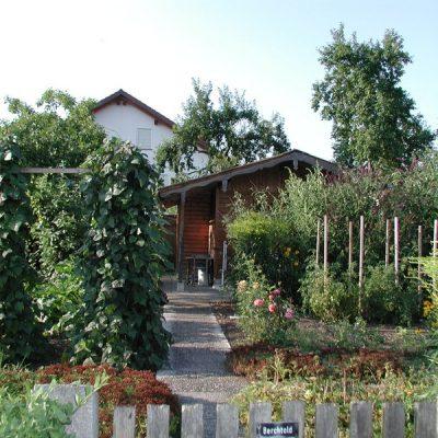 Garten--5-